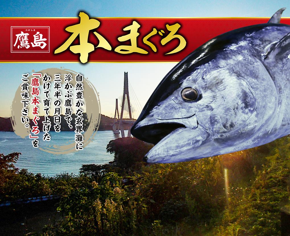 双日ツナファーム鷹島 鷹島本マグロ